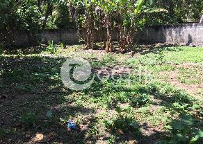 Land for sale in Balapitiya in Balapitiya