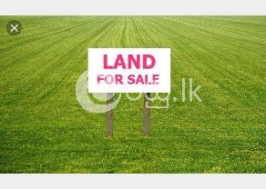 Land for sale  in Battaramulla