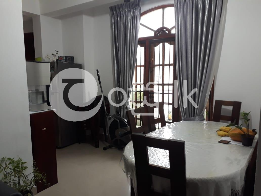 Semi Luxury Apartment  Apartments in Mount Lavinia