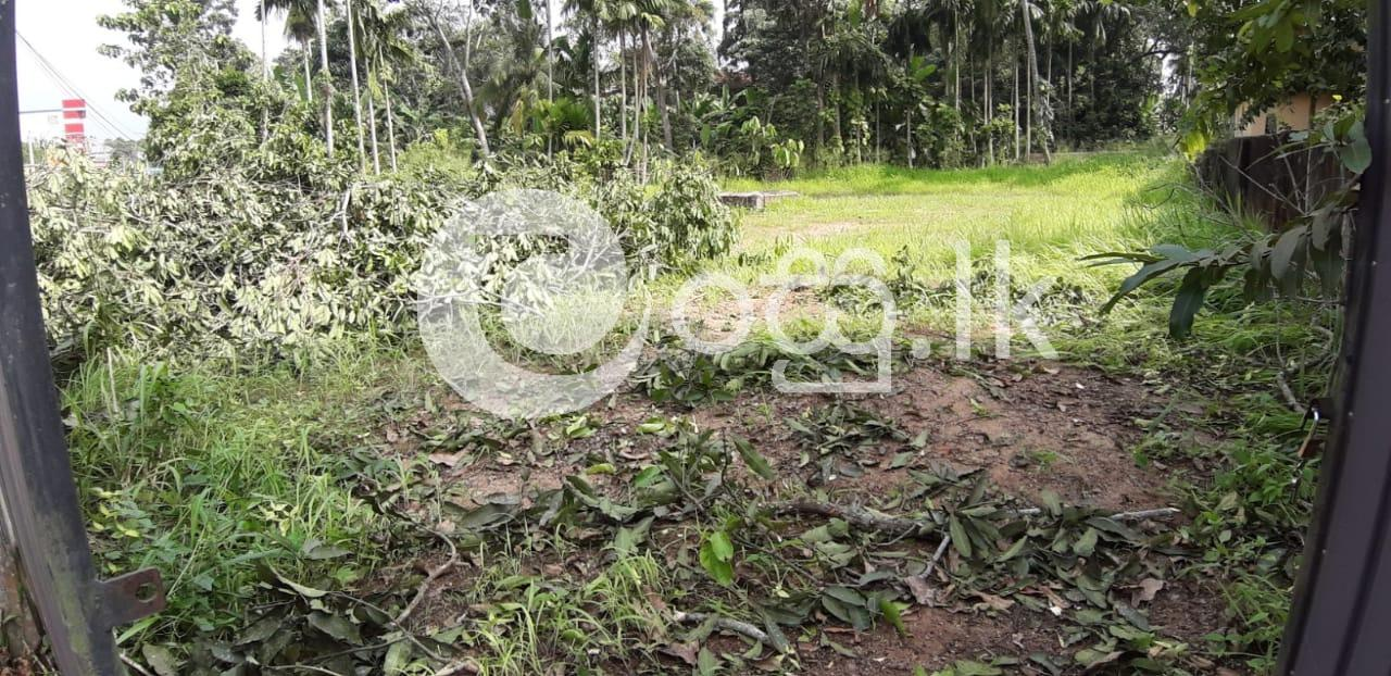 Land for sale in Galle in Galle