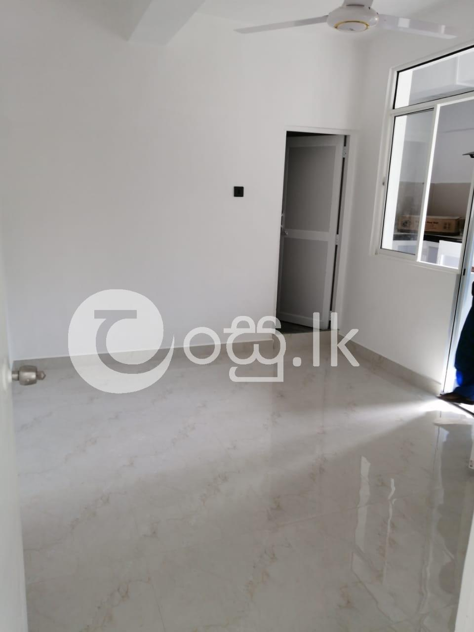 Newly Built Apartment Apartments in Colombo 6