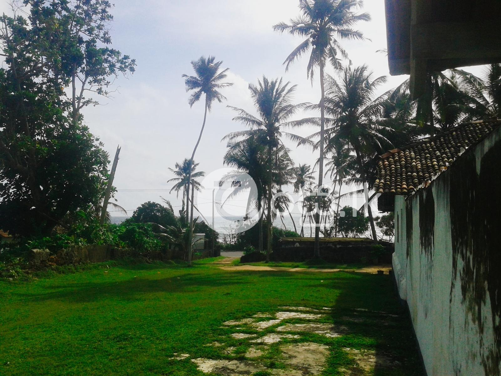 Sea Faced Land for Sale   Balapitiya Land in Ambalangoda