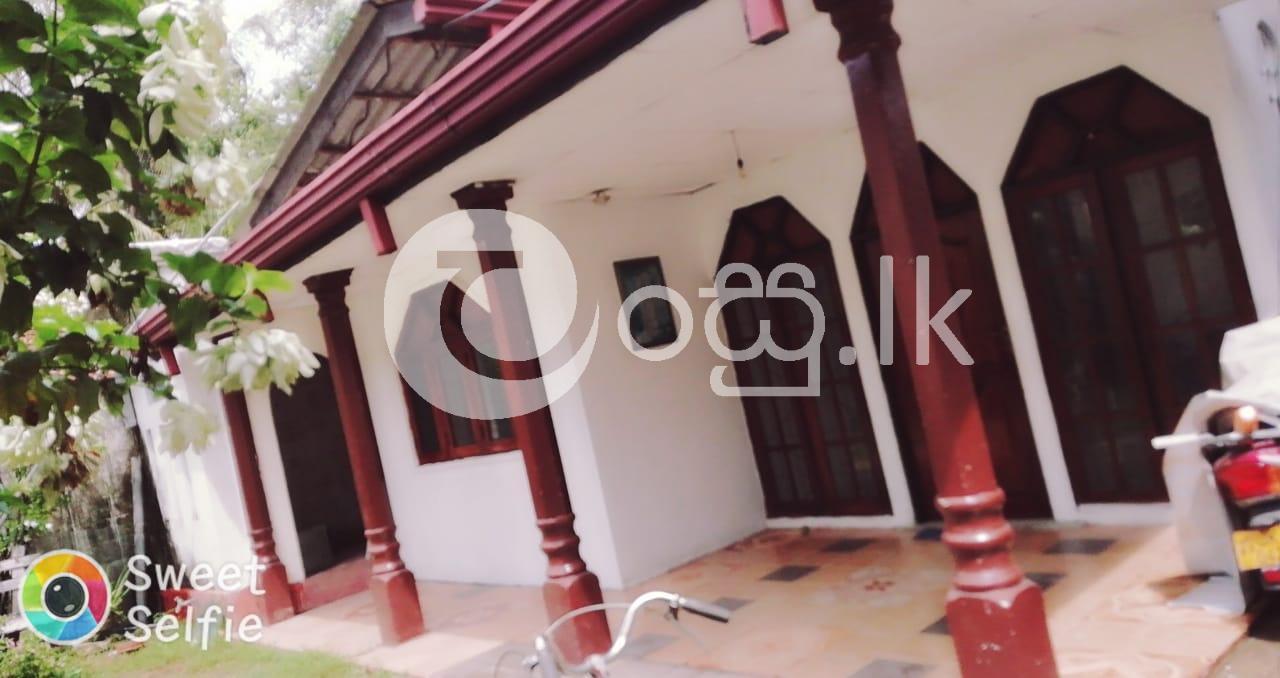 House for Sale in Nagoda Kandana Houses in Kandana