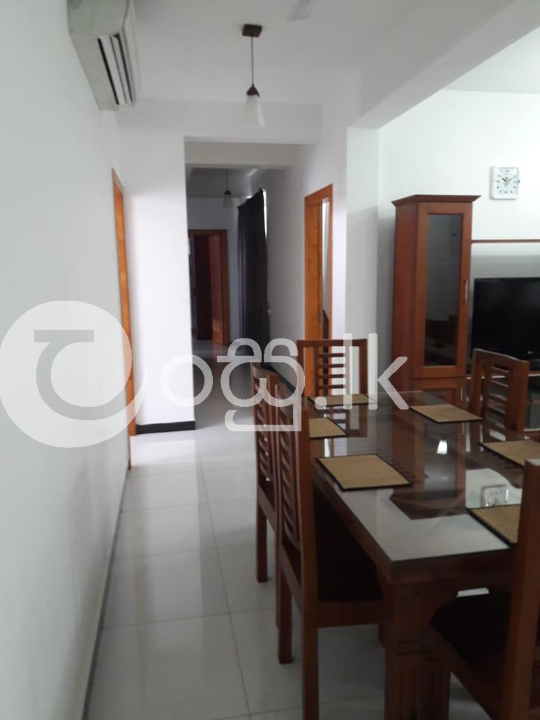 Fully Furnished Apartment  Apartments in Mount Lavinia