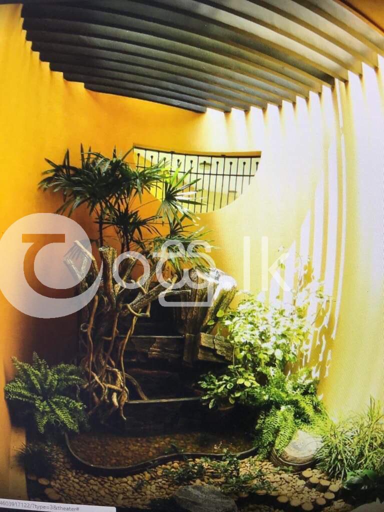 Two storied House for Quick Sale at Rajagiriya  Welikada Terrace Houses in Rajagiriya
