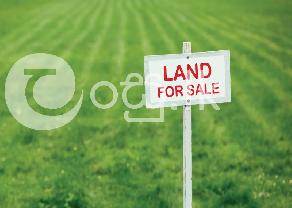 Highly Residential Land for Sale in Kuliyapitiya in Kuliyapitiya