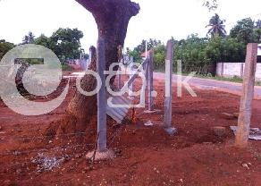 Highly Valuable Land with All Facilities in Jaffna