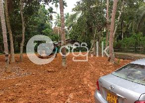 Land For Sale Habaraduwa Galle in Galle