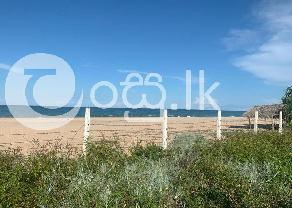 Beach Front Valuable Land  in Trincomalee