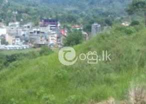 Bare Land for Sale in   Balangoda in Balangoda