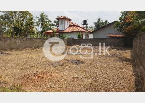 Land for sell in Katuwapitiya in Negombo