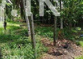 Land for sell in Kottawa in Kottawa