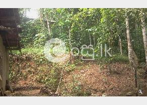 Land with house in Hanwella