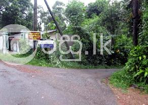 15 Perches Land for Sale in Yagoda in Ganemulla