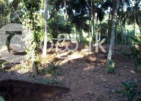 40 Perches Bare Land for Sale in Ragama. in Ragama