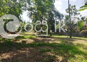 Land for sale in Bemmulla  Gampaha. in Gampaha