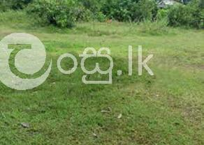Valuable Land for Sale in Wewlagala Rd  Horana in Wellampitiya