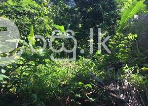 Land Sale in Kegalle Town. in Kegalle