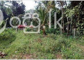 Land for sale in bandaragama in Bandaragama