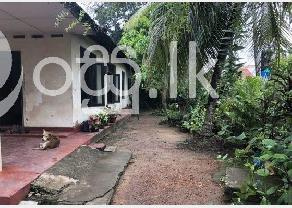 Land for rent   lease in piliyandala in Piliyandala