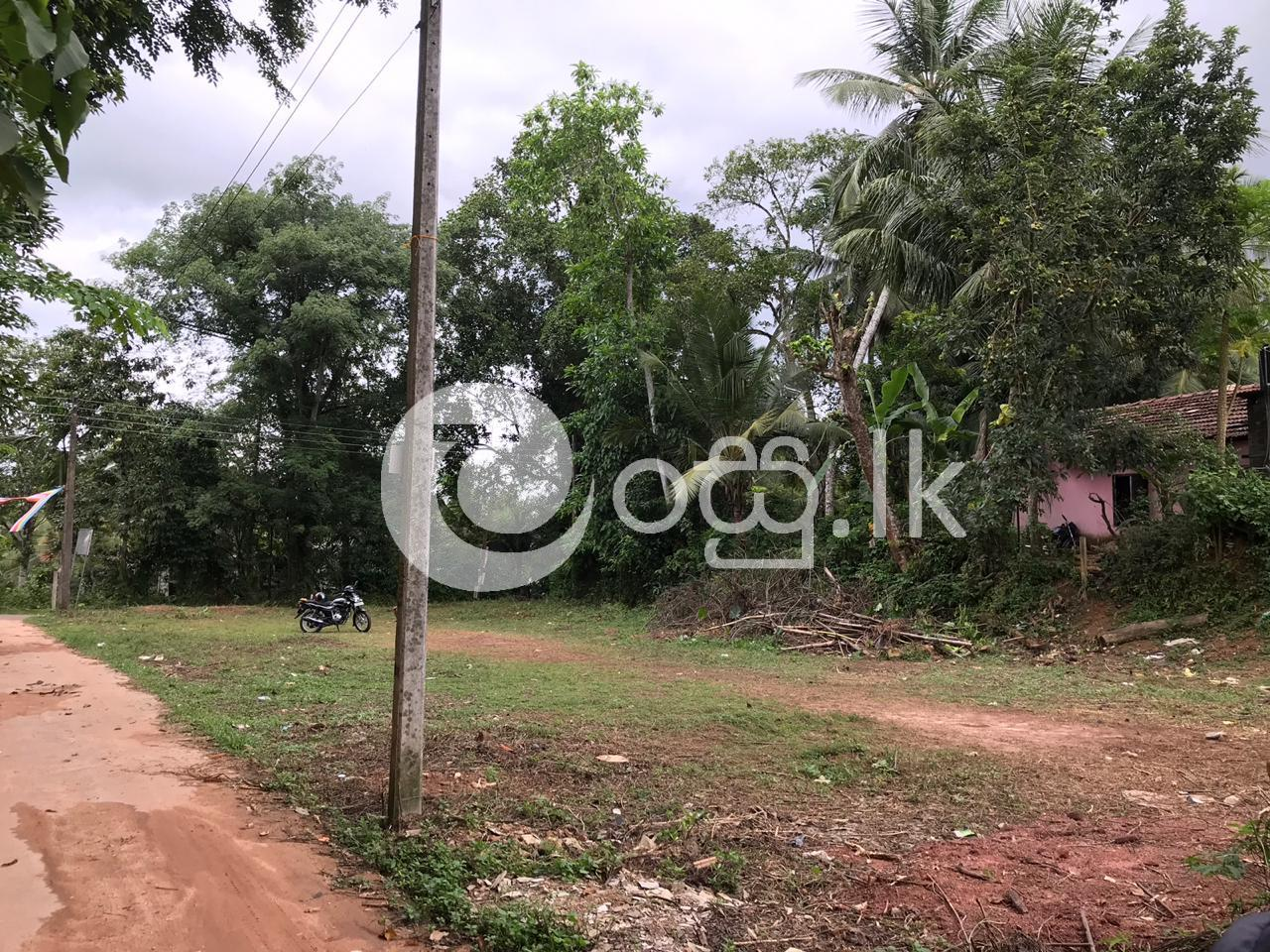 Land for sale in Homagama Land in Homagama