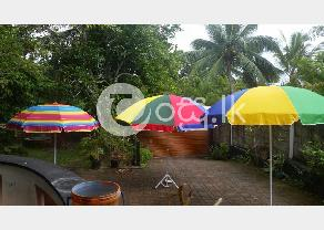 Umbrella & Garden 50% OFF! Powder Coated Frames worth Rs.4 000 for just Rs.2 000 in Padukka