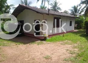 Minuwagoda Home for sell in Gampaha