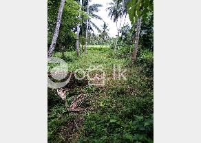 Land For Sell in Kaduwela
