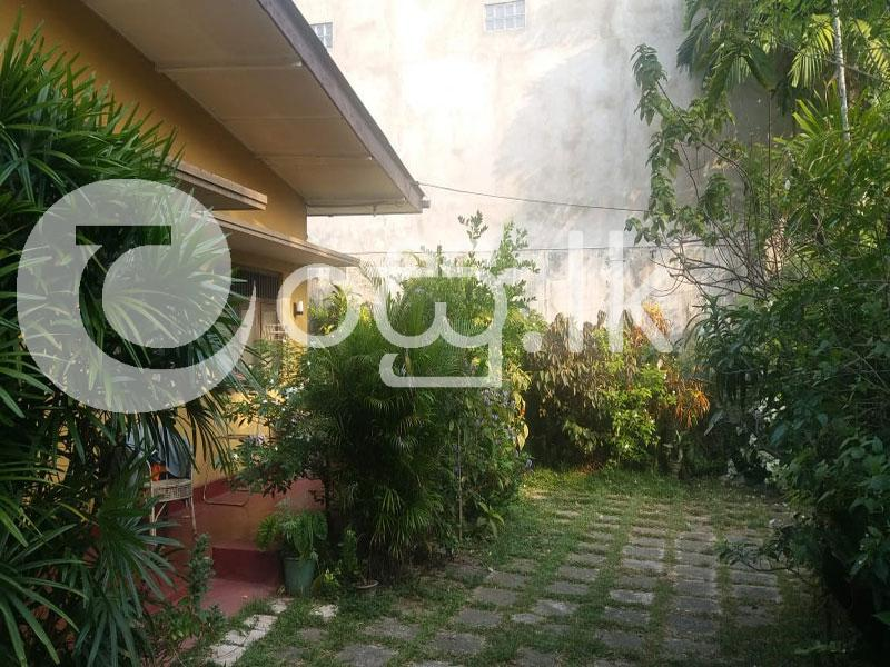 Beautifully House with Land For Immediate  Houses in Boralesgamuwa