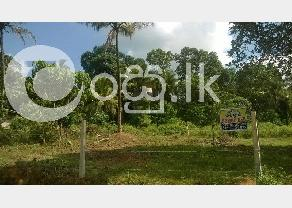 Valuable Bare Land for Sale in Kiriwaththuduwa in Horana