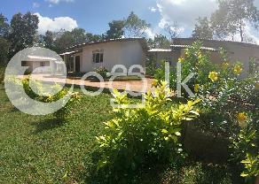 Holiday Cottage for Sale in Kataragama in Kataragama