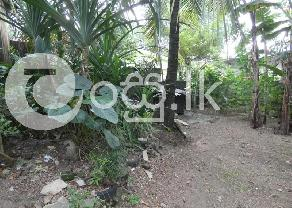 Valuable Land with House for Sale in IDH New Town in Kolonnawa