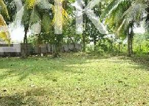 Land 148 perches For Sale in Mirigama