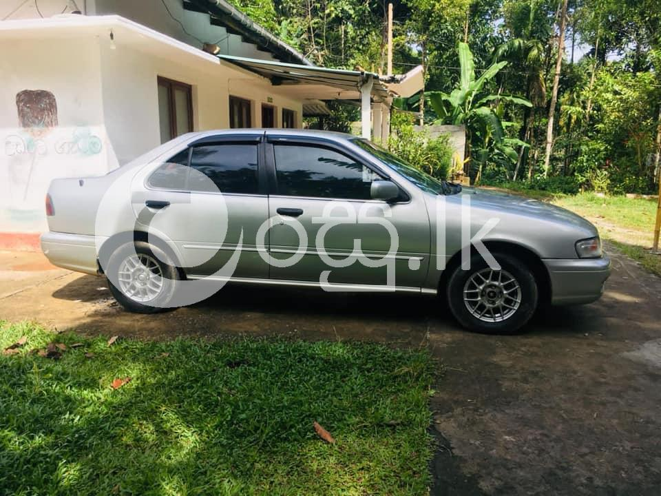 Nissan sunny Cars in Kandy