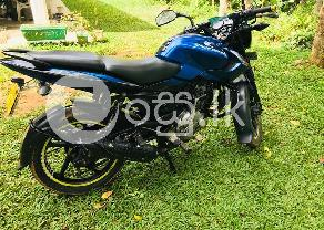 PULSAR 135 2013