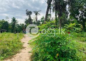 Land For Sale In Ahungalla in Balapitiya
