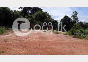Land Sale in Balapitiya in Balapitiya