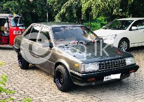 Nissan HB11 in Gampaha