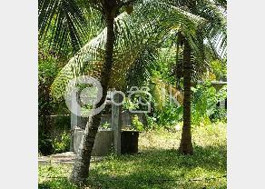 Land For Sale In Kadawatha in Kadawatha