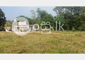 Land For Sale In Horana in Horana