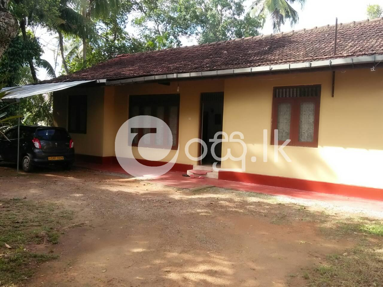 House with Land For Sale In Kaluthara in Kalutara