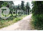 22 Acres Land in Puttalam in Puttalam